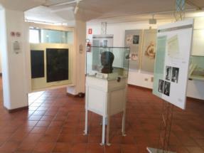 Sala_bronzi_Museo_archeologico_Zuglio©Anna_Pia_Zamolo[11101]